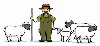 Schafen Zwei Schafe Cartoon Lamm Schaefer Liegen