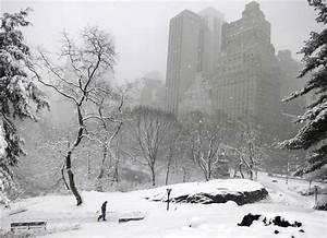 Snow storm blankets New York City, leaving pretty scenes ...