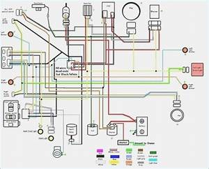 Wiring Diagram For 150cc Scooter  U2013 Moesappaloosas Com