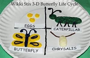 Wikki Stix 3-D Butterfly Life Cycle Craft for Kids | Wikki ...