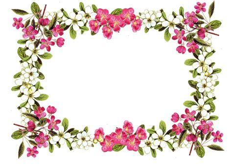 flower border png   clip art  clip
