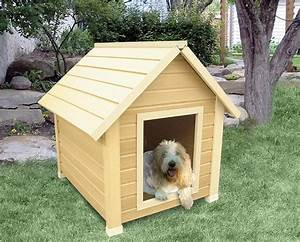 Diy dog house for beginner ideas for Easy dog house