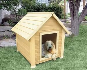 Diy dog house for beginner ideas for Easy dog house