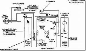 Service Manual  Need A Vacuum Hose Diagram
