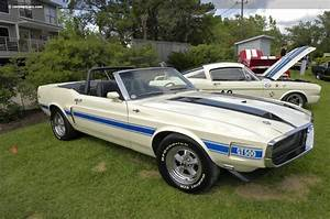 Image Gallery 1971 Shelby Convertible