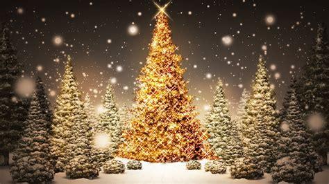 glowing christmas trees hd wallpaper 187 fullhdwpp full hd
