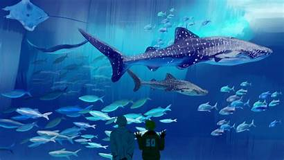 Aquarium Awesome Wallpapers Pixelstalk Fishtank Screensaver 1080p