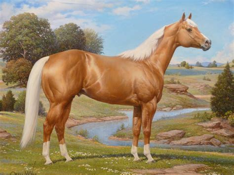 horse palomino quarter american horses paintings mixer orren stallion painting caballo association hall museum fame thoroughbred celebrated artwork artist