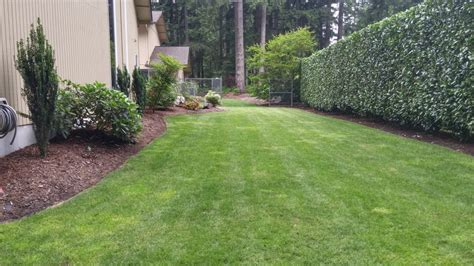 landscaping barriers residential walls barriers privacy screens fencing levy s lawns landscaping