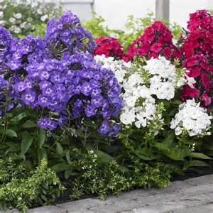 Garden Pots And Containers Photo