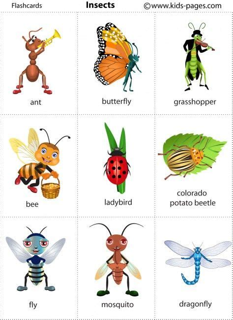 Kids Pages  Insects Great For Japanese Vocab  Christmas Gift Ideas  Pinterest  Kids Pages