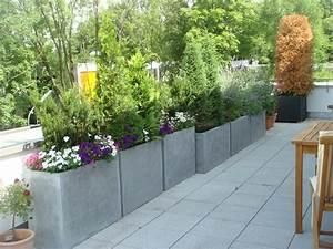 Pflanzen Für Dachterrasse : projektbeispiele paradiesgarten maag ~ Michelbontemps.com Haus und Dekorationen