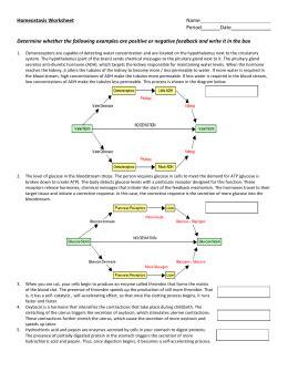 feedback mechanisms note set