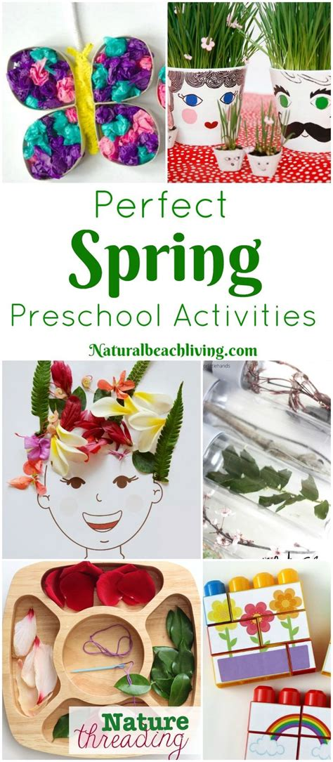 top 25 best activities ideas on flower 972 | a0ca13cb457d37aa8501ca2fb85520c6 nature theme preschool activities flower toddler activities