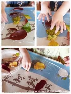 Activites Enfant 2 Ans : comment veiller nos enfants la nature la cour des petits ~ Melissatoandfro.com Idées de Décoration