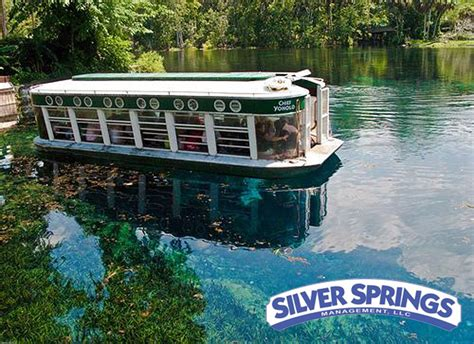 Silver Springs Glass Bottom Boat the world glass bottom boats at silver springs