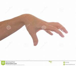 Well Shaped Men Hand Reaching For Something Isolated Stock ...