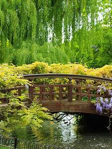 Free, Download, Spring, Gardens, Apartments, Windows, 8, Theme, All, For, Windows, 10, 1920x1200, For, Your