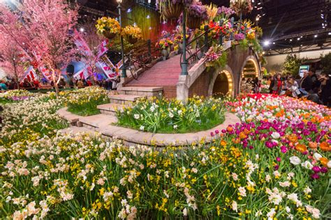 Flower Show 2019 : It's An Aarp Block Party At The 2018 Phs