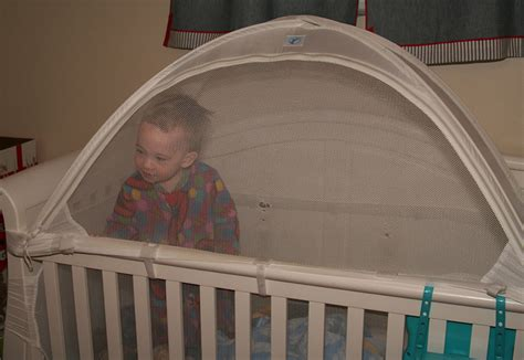 baby crib tent cribs tents for the boys three weasels