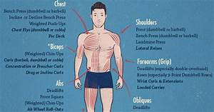 How Long Does It Take To Build Muscle   Plus Infographic