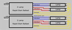 Wiring Diagram  29 4 Lamp T12 Ballast Wiring Diagram
