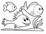 Coloring Ocean Printable Animals Pages sketch template
