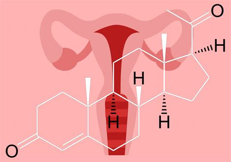 Shedding Of Uterine Lining Before Period by Everything You Need To Know About Low Progesterone And