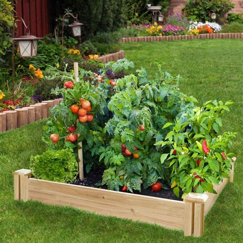 the tips and trends for the gardening space