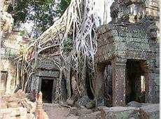 Angkor Wat Temple XciteFunnet