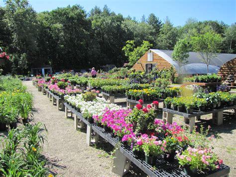 Garden Center by Garden Center Shady Hill Greenhouses