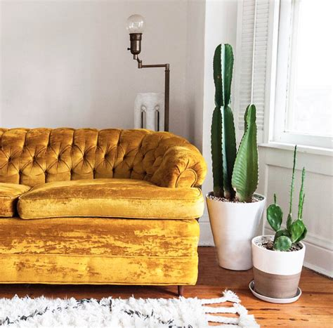 mustard yellow velvet sofa marianne beautiful sofas mustard and essentials