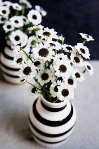 Schwarz Weiß Kontrast : basteln malen kuchen backen blumen schwarz weiss ~ Frokenaadalensverden.com Haus und Dekorationen