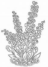 Coloring Flower Bed Flowerbed sketch template