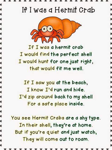 memorial weekend hop all about hermit crabs 828 | c6134c2a95ba614b0fc3dc2aa7ebf189