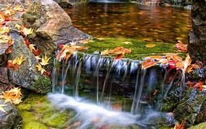 Beautiful, Butchart, Gardens, Waterfall, Nature, Scenery, Wallpaper, 4826, Wallpapers13, Com