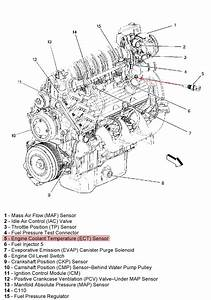2001 Impala Gas Gauge Wiring Diagram