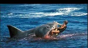 Great White Shark Attacks Related Keywords & Suggestions ...
