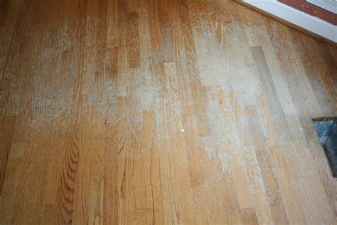 buff  coat  wood floors bath granite denver