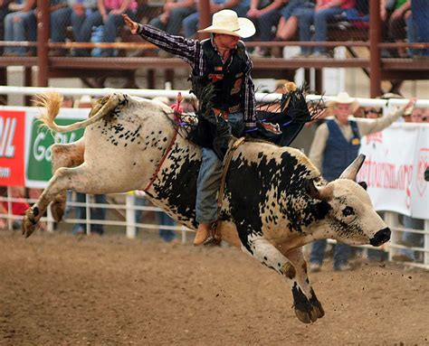 'Rodeo cowboys want to have fun'   WyoFile