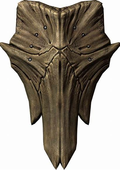 Shield Dragonplate Skyrim Elder Scrolls Shields Dragon