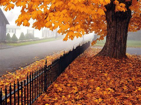 Style A Few Tips For The Autumnwinter Season Part 2