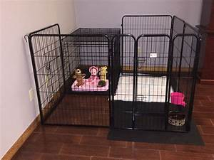 puppy crate and playpen easy crate training for With best dog crates for puppies