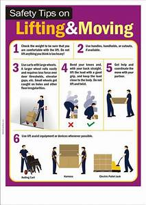 The 20 Best Manual Handling Images On Pinterest