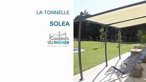 Tonnelle 4 X 3 : tonnelle solea castorama youtube ~ Edinachiropracticcenter.com Idées de Décoration