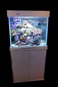 pin poissons eau de mer on