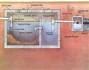Secrets Of The Septic System - Homesteading And Livestock