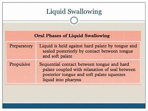 Diagram Of Swallowing Liquid