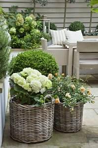 Ranken Blumen Garten : ber ideen zu vorg rten auf pinterest vorgarten anlegen gartenbau und landschaftsbau ~ Whattoseeinmadrid.com Haus und Dekorationen