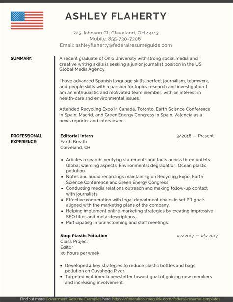 entry level federal resume sample federal resume guide